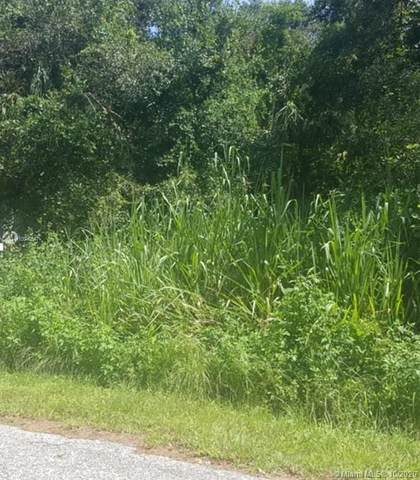 1059 Park Dr., La Belle, FL 33935 (MLS #A10940547) :: Castelli Real Estate Services