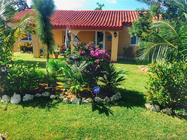 6765 SW 17th St, Miami, FL 33155 (MLS #A10944798) :: Berkshire Hathaway HomeServices EWM Realty