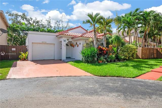 11290 SW 157th Ct, Miami, FL 33196 (MLS #A10944825) :: THE BANNON GROUP at RE/MAX CONSULTANTS REALTY I