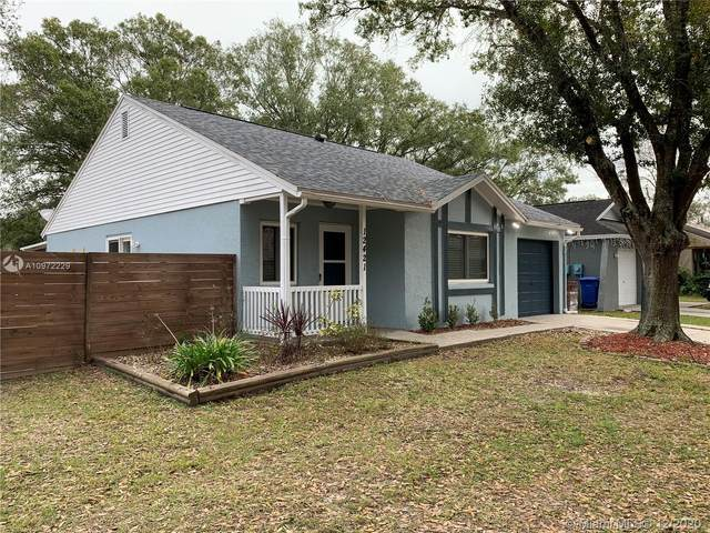 12421 Pepperfield, Tampa, FL 33624 (MLS #A10972229) :: THE BANNON GROUP at RE/MAX CONSULTANTS REALTY I