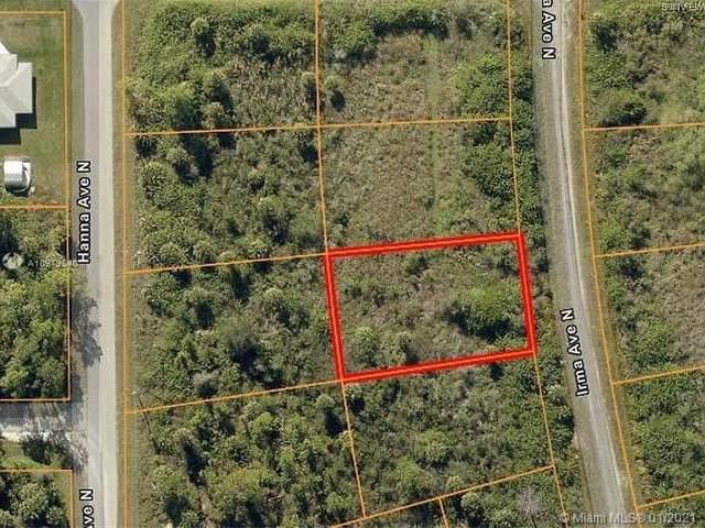 1507 Palmetto Ave, Lehigh Acres, FL 33972 (MLS #A10979840) :: Berkshire Hathaway HomeServices EWM Realty