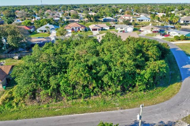 181 NE Dominican Ter, Port Saint Lucie, FL 34983 (MLS #A10981318) :: The Jack Coden Group