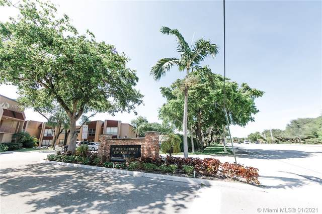 301 N Pine Island Rd #216, Plantation, FL 33324 (MLS #A10985956) :: Green Realty Properties