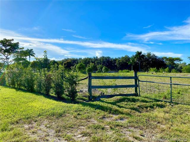 14507 Stirling Rd, Southwest Ranches, FL 33330 (MLS #A10986713) :: Patty Accorto Team