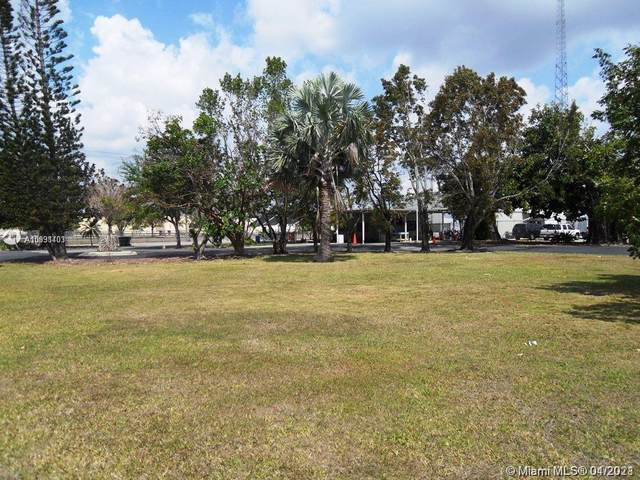 505 N Flagler Ave, Homestead, FL 33030 (MLS #A10991403) :: Compass FL LLC