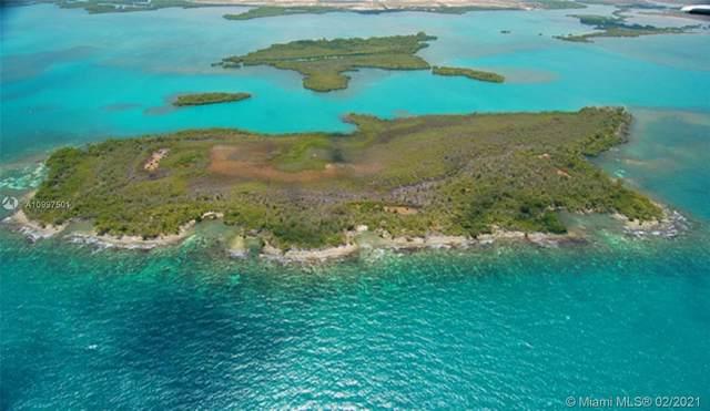 Toledo District Belize, Palmetto Caye, FL 00000 (MLS #A10997501) :: Douglas Elliman