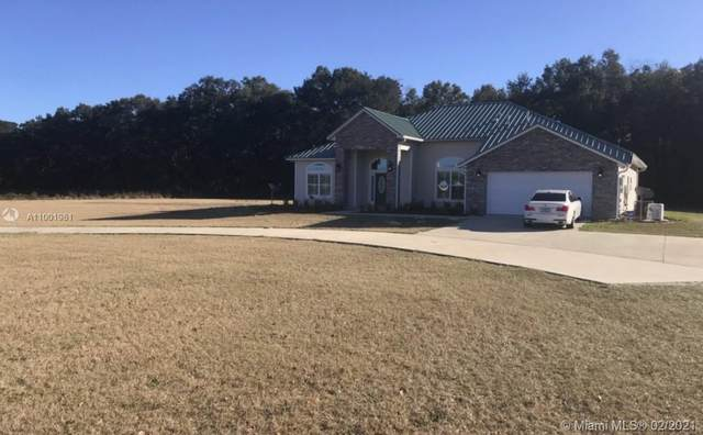 956 Morningstar Gln, Other City - In The State Of Florida, FL 32038 (MLS #A11001981) :: The Riley Smith Group