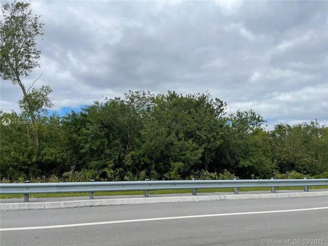 Nw 66 102 Ave, Doral, FL 33178 (MLS #A11008312) :: The Jack Coden Group