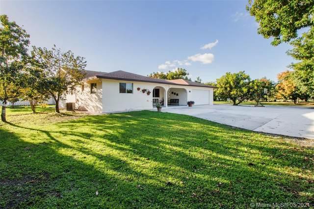 16350 SW 203rd Ave, Miami, FL 33187 (MLS #A11008381) :: Castelli Real Estate Services