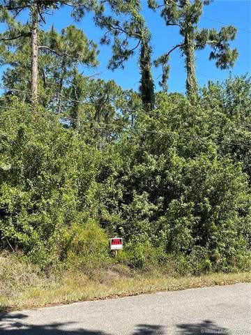 404 Greenwood Ave, Lehigh Acres, FL 33972 (MLS #A11022112) :: The Teri Arbogast Team at Keller Williams Partners SW