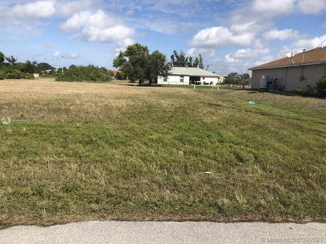 2805 Nw 13 St, Cape Coral, FL 33993 (MLS #A11024377) :: GK Realty Group LLC