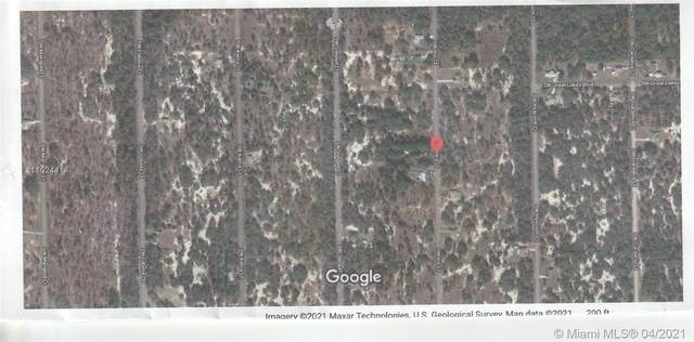 SW SW Hyacynthe, Other City - In The State Of Florida, FL 34431 (MLS #A11024414) :: Equity Advisor Team
