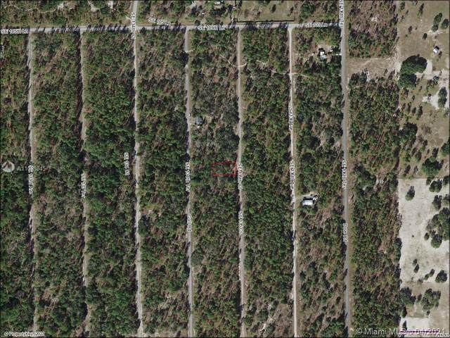 0 SE 136th Ct, Other City - In The State Of Florida, FL 34431 (MLS #A11028045) :: Patty Accorto Team