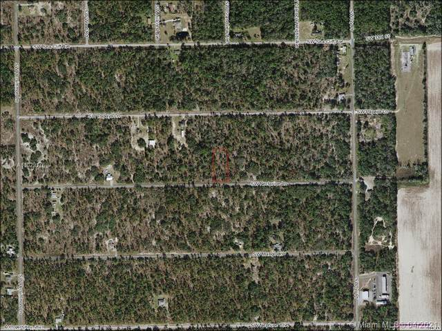 0 SW Nectarine Ln, Other City - In The State Of Florida, FL 34431 (MLS #A11029176) :: Onepath Realty - The Luis Andrew Group