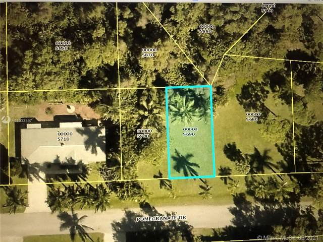 7412 Pomegranate Dr, Cape Coral, FL 33922 (MLS #A11033397) :: The Riley Smith Group