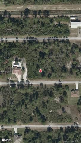 1139 Venetia St, Lehigh Acres, FL 33974 (MLS #A11034616) :: Onepath Realty - The Luis Andrew Group