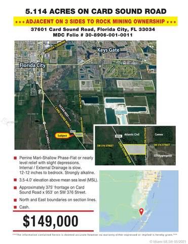 37601 Card Sound Road, Florida City, FL 33034 (MLS #A11035887) :: Berkshire Hathaway HomeServices EWM Realty