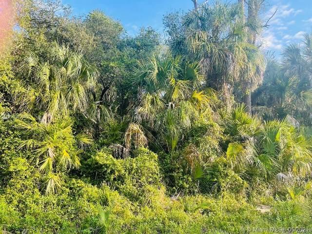 232 Sparkle Dr, La Belle, FL 33935 (MLS #A11038650) :: Castelli Real Estate Services