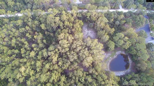12319 Old Indiantown Road, Jupiter, FL 33478 (#A11040217) :: Posh Properties