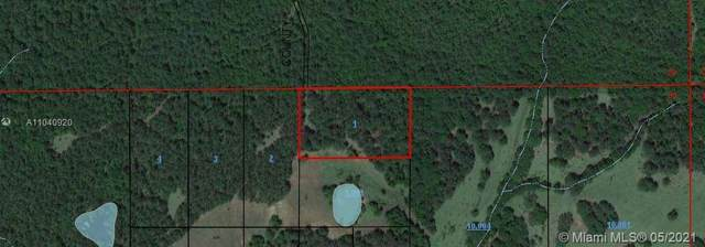 Parcel 1-4 County Road 20, Out Of City Limits, FL  (MLS #A11040920) :: The Teri Arbogast Team at Keller Williams Partners SW