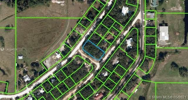 3006 N Cambridge Road, Sebring, FL 33825 (MLS #A11042226) :: Castelli Real Estate Services