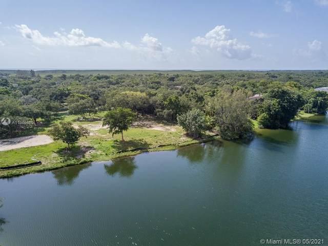 10640 Lakeside Dr, Coral Gables, FL 33156 (MLS #A11046989) :: Albert Garcia Team