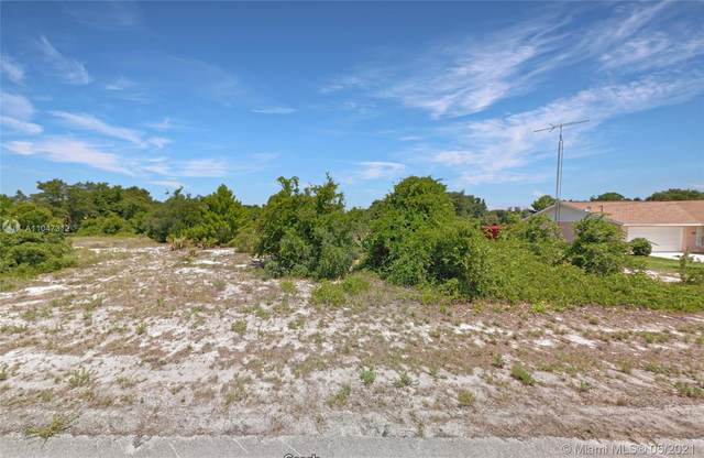1018 Godetia St, Lake Placid, FL 33852 (MLS #A11047312) :: Castelli Real Estate Services