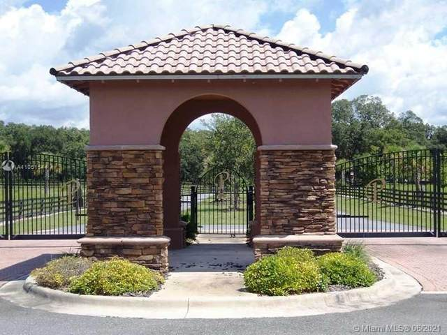8876 134 Lane, Gainesville, FL 32618 (MLS #A11051544) :: Team Citron