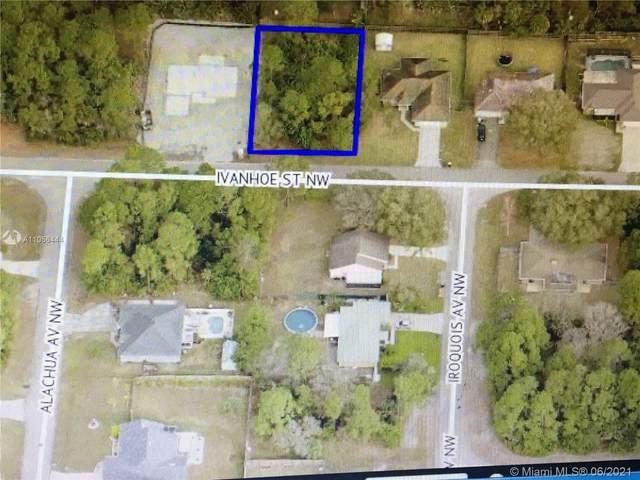 1169 NW Ivanhoe, Palm Bay, FL 32907 (MLS #A11056444) :: Douglas Elliman