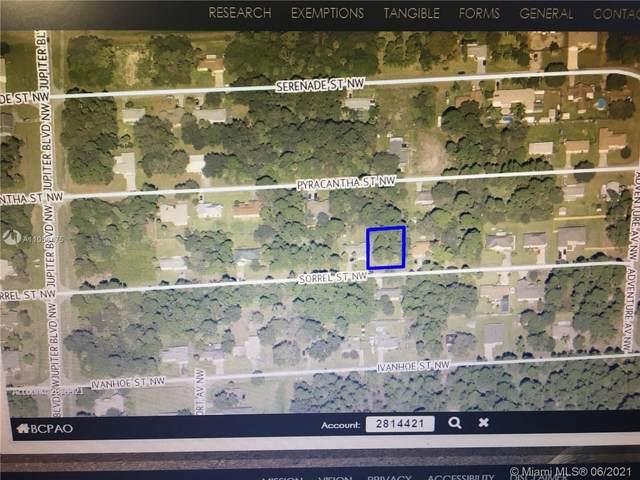 843 NW Sorrel St, Palm Bay, FL 32907 (MLS #A11056475) :: Castelli Real Estate Services