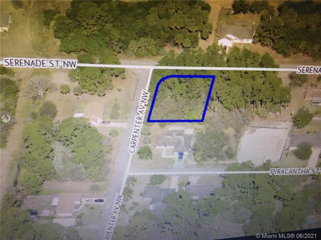 XX NW Carpenter Ave Nw, Palm Bay, FL 32907 (MLS #A11056485) :: Castelli Real Estate Services