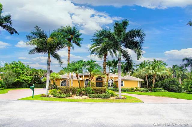 12500 SW 34th Pl, Davie, FL 33330 (MLS #A11058821) :: United Realty Group