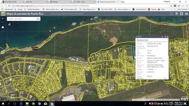 CALLE  110 NW Km 9.9, Barrio Maleza Alta, PR 00603 (MLS #A11059746) :: Castelli Real Estate Services