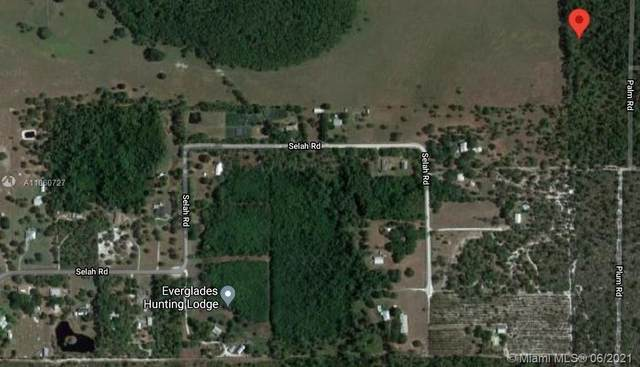 5121 Rhubarb St, Sebring, FL 33875 (MLS #A11060727) :: Douglas Elliman