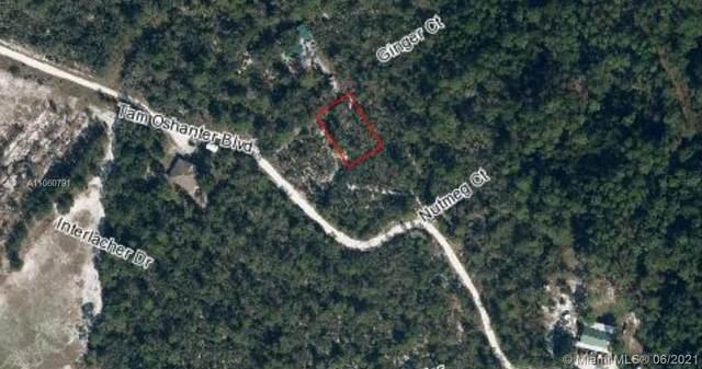 2853 Ginger Ct, Sebring, FL 33875 (MLS #A11060791) :: Castelli Real Estate Services