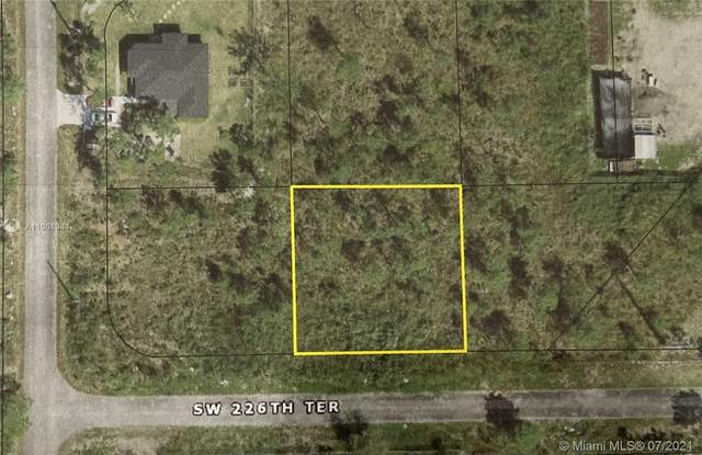 226, Unincorporated Dade County, FL 33170 (MLS #A11061944) :: Onepath Realty - The Luis Andrew Group