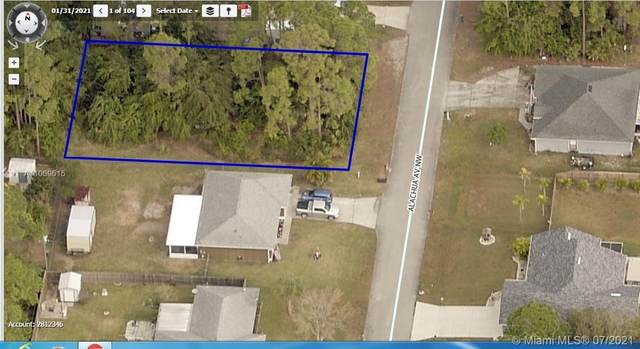 486 Alachua Ave  Nw, Palm Bay, FL 32907 (MLS #A11069615) :: Castelli Real Estate Services