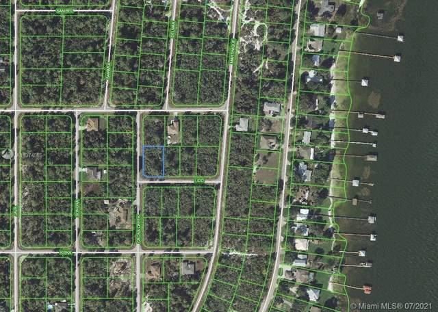 222 Cross Creek Ave, Lake Placid, FL 33852 (MLS #A11074585) :: Prestige Realty Group