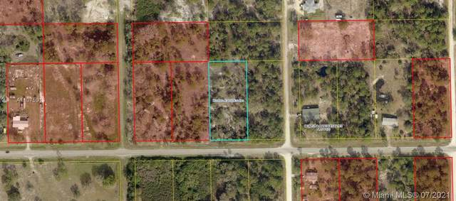 339 Camino Real Blvd, Clewiston, FL 33440 (MLS #A11075013) :: Prestige Realty Group