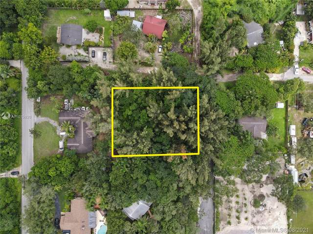 231xx 156 Ave, Miami, FL 33170 (MLS #A11075930) :: The Pearl Realty Group