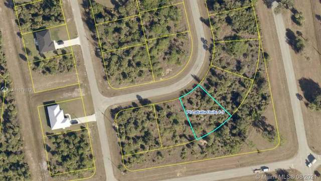 3335 Clearview Cir, La Belle, FL 33935 (MLS #A11078072) :: Douglas Elliman