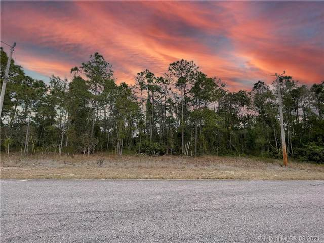 807 Glen Coy, Lehigh Acres, FL 33974 (MLS #A11078747) :: Onepath Realty - The Luis Andrew Group