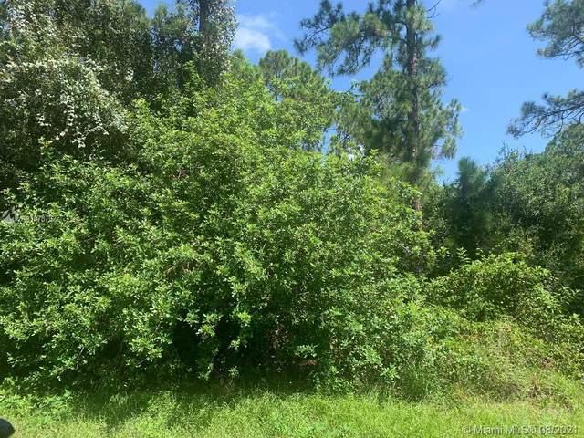 315 Avenida Del Sur, Clewiston, FL 33440 (#A11078792) :: Dalton Wade