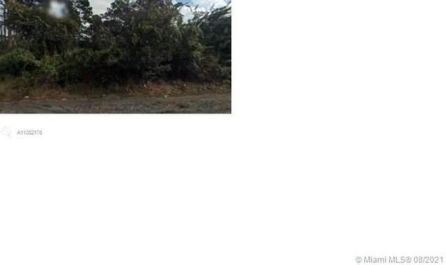 2466 Woodyglen St, Port Charlotte, FL 33949 (MLS #A11082176) :: Douglas Elliman