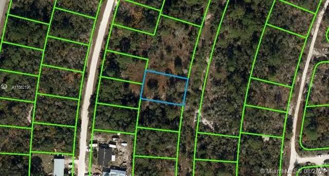 368 Dreamers Dr, Lake Placid, FL 33852 (MLS #A11082196) :: Castelli Real Estate Services