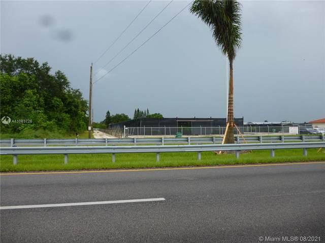 17490 SW 210th St, Miami, FL 33187 (MLS #A11083726) :: Vigny Arduz | RE/MAX Advance Realty