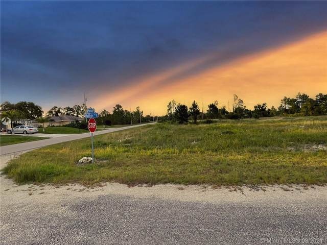 1239 E Hathor, Lehigh Acres, FL 33974 (MLS #A11086631) :: Castelli Real Estate Services
