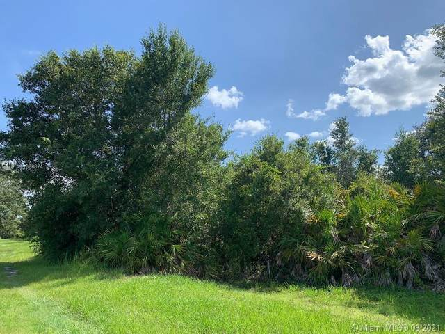 0 Hammons Rd, Other City - In The State Of Florida, FL 33843 (MLS #A11088874) :: Castelli Real Estate Services