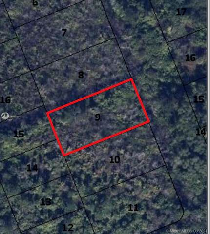 0 Tbd, Hobe Sound, FL 33455 (MLS #A11089941) :: Onepath Realty - The Luis Andrew Group