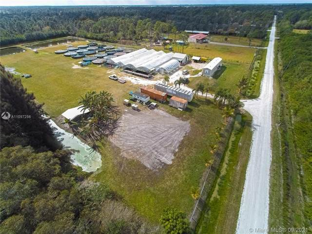 13706 Murcott Ave., Clewiston, FL 33440 (MLS #A11097256) :: CENTURY 21 World Connection